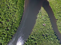 Top View of Amazon rainforest, Brazil Stock Photography