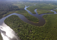 Top View of Amazon rainforest, Brazil.  Royalty Free Stock Photos