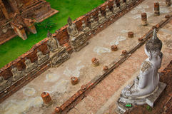 Top view of ancient buddha statue in a row Royalty Free Stock Photos