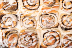 Top View Appetizing Cinnamon Buns Stock Photos