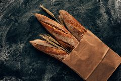 Arranged french baguettes in paper bag and wheat on dark tabletop with flour. Top view of arranged french baguettes in paper bag and wheat on dark tabletop with Stock Photo