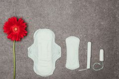 Top view of arrangement of red flower, menstrual pads and tampons. On grey surface royalty free stock images