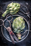 Top view artichoke still life with vintage scissors Stock Image