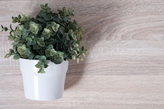 Top view of artificial potted plant on wooden table Royalty Free Stock Photos