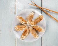 Top view Asian cuisine pan fried dumplings Royalty Free Stock Photo