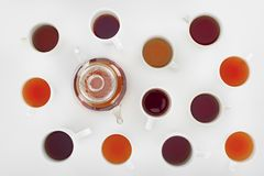 Top view of assorted herbal tea in cups and teapot. On grey royalty free stock photography