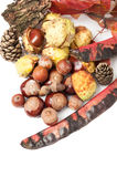 Top view of autumn or fall decorations. On white table Royalty Free Stock Image