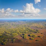 Top view of autumn forest and marshes Stock Image