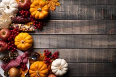 Top view of Autumn maple leaves with Pumpkin, apple, corn royalty free stock photography