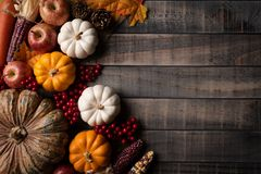 Top view of Autumn maple leaves with Pumpkin, apple, corn stock photos