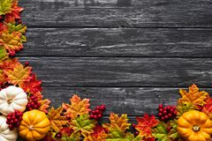 Top view of Autumn maple leaves with Pumpkin and red berries on old wooden backgound. royalty free stock photos