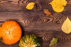 Top view of Autumn mini-pumpkins and fallen leaves on a wooden background. Happy Thanksgiving and Harvest Day. stock photos