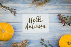 Greeting postcard Hello Autumn in rustic style. Top view of autumn orange pumpkins and dry flowers with grass thanksgiving background over blue toned wooden stock photography