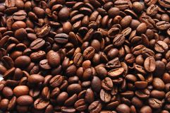 The top view background coffee grains Stock Photography