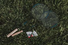 Top view. Badminton rackets with a fly on the grass. stock photos