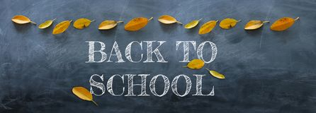 Top view banner of text sketch BACK TO SCHOOL with autumn gold dry leaves over classroom blackboard background.  royalty free stock photography