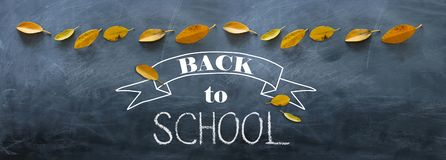 Top view banner of text sketch BACK TO SCHOOL with autumn gold dry leaves over classroom blackboard background.  royalty free stock images