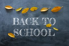 Top view banner of text sketch BACK TO SCHOOL with autumn gold dry leaves over classroom blackboard background.  royalty free stock photos