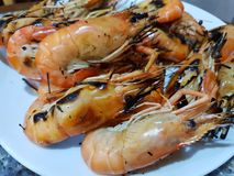 Top view of barbecued shrimp on plate in restaurant stock images