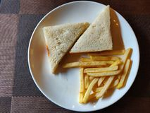 Basic sandwich. Top view of basic cheese sandwich presented with some fries royalty free stock photography