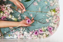 Top view of bath filled with blue bubble water, flowers, branches and petals. With woman`s hand, spa or selfcare concept royalty free stock images