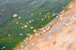 Top view of a beach with sand and stones in water and green emerald water with algae. Top view of a beach with sand and stones in water and green emerald water Stock Images