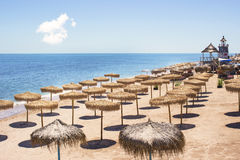 Top view of beach with straw umbrellas rows Stock Photo
