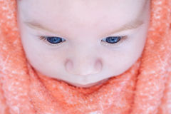 Top view of a beautiful baby with blue eyes Stock Image