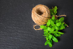 Top view of beautiful bunch fresh green melissa officinalis tied. Twine and yarn on slate background, close up royalty free stock images