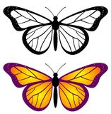 Top view of beautiful butterfly set vector illustration
