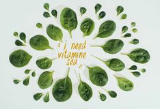 top view of beautiful fresh green leaves and words i need vitamine sea royalty free stock photo