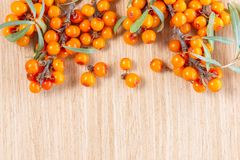 top view of fresh sea buckthorn berries over wooden background, concept of healthy eating, dieting royalty free stock photography