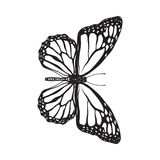 Top view of beautiful monarch butterfly, isolated sketch style illustration vector illustration
