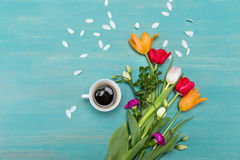 Top view of beautiful tulips with green leaves, white petals and cup of coffee. On blue wooden table top Stock Images
