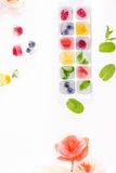 Top view of berries and fruits in ice cubes with flowers. Isolated ob white Royalty Free Stock Photos