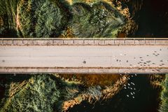 Top view birds flying above bridge. Aerial photo. stock photography