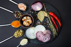 View from above . On a round board, sharp vegetables and a spoonful of spices. Stock Images