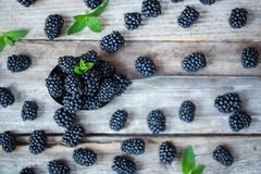 Top view of blackberries in a spoon on wooden table royalty free stock photography