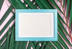 Top view blank blue pastel photo frame on green palm leaf on pas. Tel pink table top background.Summer vacation backdrop.Mock up for display design and text Royalty Free Stock Photo