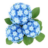 Top view of blue flower in stone pot  on white Stock Photo