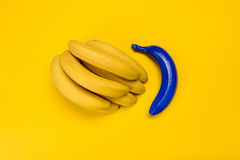 Top view of blue and yellow bananas isolated on yellow Stock Photos