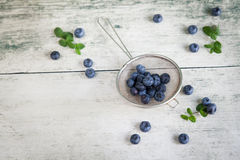 Top-view of blueberries or bilberries in a metal strainer. With mint and a place for text Royalty Free Stock Photos