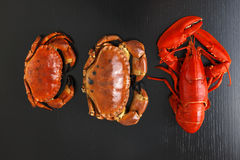 Top view of Boiled Atlantic Lobster and crabs Stock Photography
