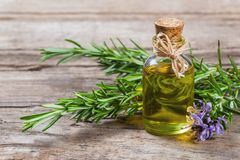 Top view Bottle glass of essential rosemary oil with rosemary branch and flower on wooden rustic background. Herbal oil concept stock image
