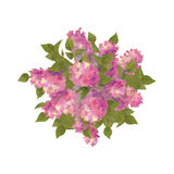 Top View Bouquet of Lilac Royalty Free Stock Photos