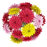 Top view bouquet of yellow red and pink flowers isolated on white Royalty Free Stock Image