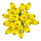 Top view bouquet of yellow tulips in vase isolated on white Stock Photo