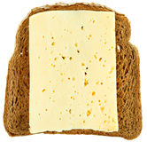 Top view of bread and cheese sandwich Stock Images