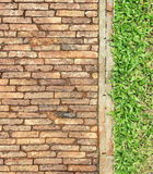 Top view brick walk path and grass land background Stock Images
