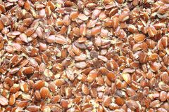 Top view of broken flax seeds . Can be used as background Royalty Free Stock Image